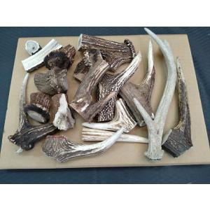 天然素材 北海道の鹿の角B品 サイズはバラバラです 折れたり割れたりしている角の1キロ売犬のおやつナイフ材等に 愛犬のおやつ 犬のエサ(鹿角 犬の餌|turidaisuki