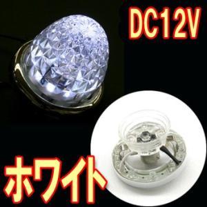 YAC(ヤック)製セレブなLEDユニット☆【流星LEDマーカーユニットDC12V(ホワイト)】 turn-wadayama