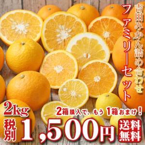 (f 02)吉田みかん 詰め合わせファミリーセット2kg ※...