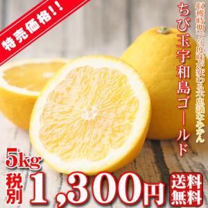 (fちびゴ 05)ちび玉宇和島ゴールド 5kg  (葉傷・枝...