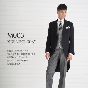 父親モーニング M003黒ネクタイ-グレーベスト レンタル 10点セット 日本製 国産生地 お直し可...