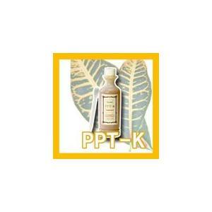PPT-Kトリートメント 300ml エポーラル【中央有機科学】 DDD 【GB2257_mother】(10002486) プロ用美容室専門店|tuyakami
