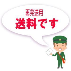 :メール便再発送券/MAIL-SAI-TICKET|tvc