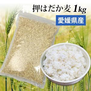 国産 大麦 押はだか麦 1kg もち麦と同じ はだか麦のうる...