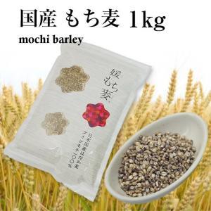 国産 もち麦 1kg 令和2年産 新麦 媛もち麦 ポイント消化