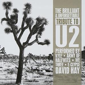 Brilliant & Unforgettable Tribute to U2