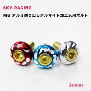 M6 アルミ削り出しアルマイト加工汎用ボルト(10個セット)全3色 バイク オートバイ カスタムパー...