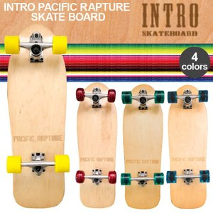 ■INTRO イントロ  サーフスケート コンプリート PACIFIC RAPTURE SKATE ...