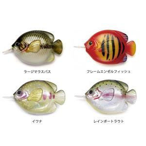 FiiiiiSH / FISH MEASURE フィッシュメジャー 巻尺 魚 釣り ルアー|tycoon|03