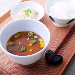 単品 MAM CAFE / MAM HIYAJIRU 冷や汁 ひやじる ひやしる 最中 もなか モナカ スープ 国産 MAMCAFE マムカフェ|tycoon