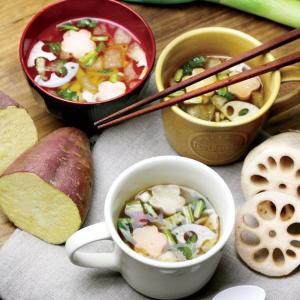 MAM CAFE / MAM KAGA-YASAI 加賀野菜 お吸い物最中 味噌汁 最中 モナカ 国産 インスタントスープ MAMCAFE マムカフェ tycoon