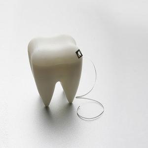 デンタルフロス 歯間フロス 糸巻きタイプ 虫歯予防 口臭予防 デンタルケア オーラルケア 歯医者 開業祝|tycoon