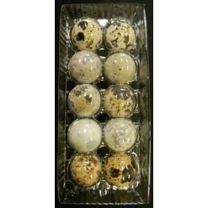タイデスのうずらもこの有精卵から産まれています。