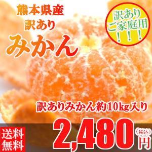 みかん 訳あり 安い 箱買い 送料無料 10kg 熊本県産