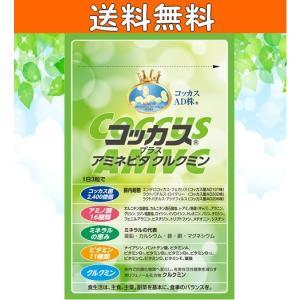 コッカスプラスアミネビタクルクミン90粒入り 腸内フローラ 善玉菌 デブ菌対策 腸活サプリ 送料無料 tyoukatukokkasu