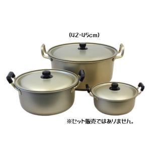 アカオ しゅう酸実用鍋 24cm tyubou-byonho