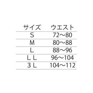 ミドリ安全 二段ベルト・メッシュ/腰部保護ベルト らくようたい DR1G (男性用/黒/3L)|tywith2