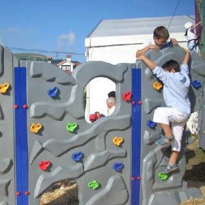 ODOLAND クライミングホールド マルチカラーホールド 屋内/屋外の遊び場 子供向 20個セット 金具付き 取り付け簡単 tywith