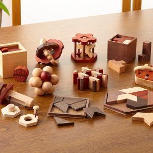 パズルで脳トレーニング -ひらめき編- 木製パズル10種+特製冊子付き