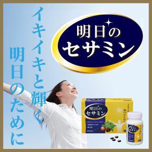 明日のセサミン  120カプセル 明日葉 発酵黒玉ねぎ 30日分 u-koryoyakuten