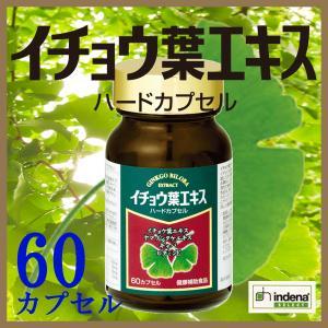 イチョウ葉エキス 60粒 ヤマブシタケ ギャバ u-koryoyakuten