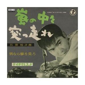 嵐の中を突っ走れ     (MEG-CD) u-topia