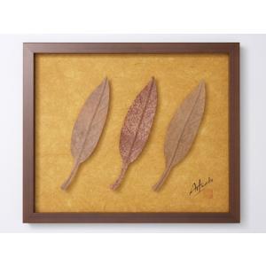 Art Works アグラオネマ柿渋染め インテリア 壁飾り 和紙 草木染 ギフトト フレームアート|ubido