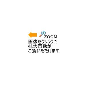 アルファネット Alphanet SPIBELT LARGE/スパイベルト ラージ 本体カラー/ウエストポーチ/ウエストバッグ [M便 1/2][物流]|uchiyama-sports|04