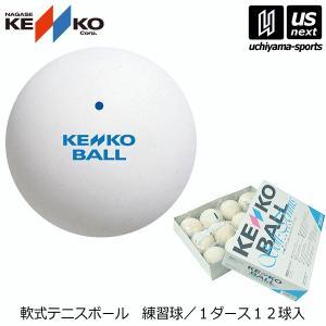 ナガセケンコー NAGASE KENKO ソフトテニスボール スタンダード・ホワイト 練習球/1ダース/軟式/2017年継続モデル (メール便不可)[自社]
