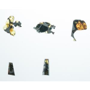 イミラック・パラサイト 石鉄隕石 カケラ 2~...の詳細画像2