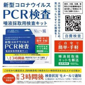 毎日17時まで注文で即日出荷☆PCR検査 唾液採取用検査キット TOAMIT-PCR-K1 pcr検査キット コロナpcr検査 唾液検査キット(1キット)