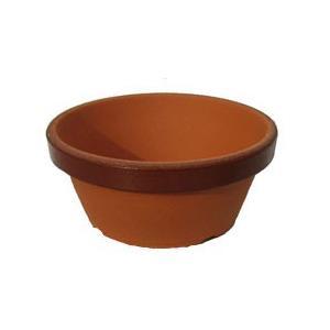 駄温鉢 浅型 3.5号 ダオン鉢・だおん鉢 育てるための素焼鉢(テラコッタ)