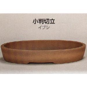 植木鉢 陶器 常滑焼  25T20【和泉屋】小判切立盆栽鉢(18号_イブシ) uekibati