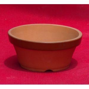 植木鉢 陶器 和風 おしゃれ 盆栽 山野草 盆栽 仕立鉢 ラン 蘭 園芸鉢 駄温鉢(浅)3号