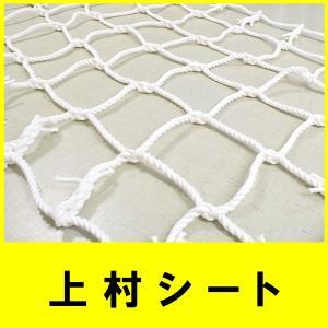 アスレチックネット ロープネット 2500mm×1000mm×目合100mm 16mmビニロンロープ使用|uemura-sheet