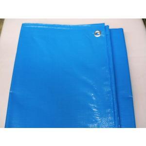 ブルーシート 厚手 3000番 国産 10m×10m|uemura-sheet
