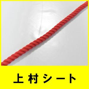 カット販売 赤 エステルカラーロープ 直径9mm