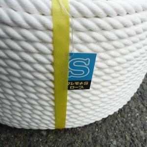 クレモナSロープ 直径30mm×長さ200m|uemura-sheet|02