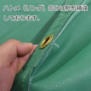エステル帆布5号 トラックシート 幅2.4m×長さ4.4m uemura-sheet 02