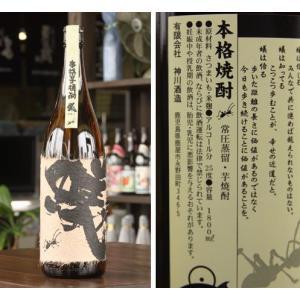 本格芋焼酎 蟻 1.800ml 当店お勧め芋焼酎!!|uenosyouten