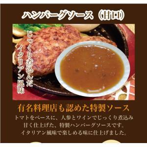ハンバーグソース(甘口)<222g> ミンチ ハンバーグ 調味料 デミグラスソース イタリアン|ueshokufood