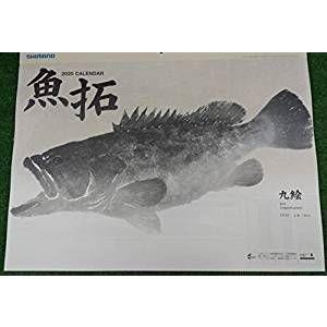 シマノ2019年魚拓カレンダー(店名印無)|uido
