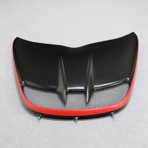 LOTUS EXIGE V6用 FRPフロントアクセスパネル|uk-sports-cars