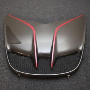 LOTUS ロータス EXIGE CUP 380 純正カーボンフロントアクセスパネル エキシージ|uk-sports-cars