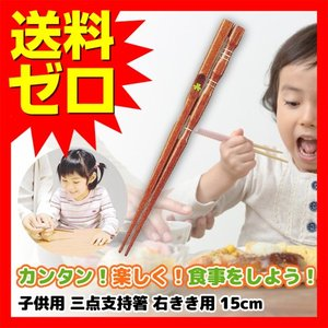 箸 子供用 イシダ 子供用矯正箸 三点支持箸 右利き用 15cm 【送料無料】|ulmax