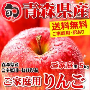 青森県産 サンふじ ご家庭用 5kg 生食可 訳あり りんご...