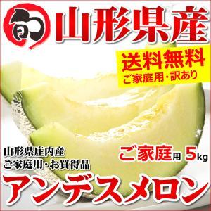 メロン 訳あり アンデスメロン 5kg (3玉〜5玉入り) ...