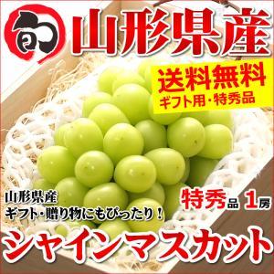 【あすつく対応/出荷中】お歳暮 ぶどう ブドウ シャインマスカット 800g(特秀品/桐箱/1房入り)|ultra-taste