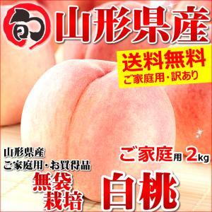 桃 白桃 2kg ご家庭用 無袋栽培 約5玉〜10玉入り 訳...