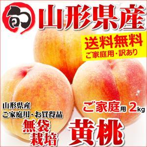 桃 黄桃 2kg ご家庭用 無袋栽培 約5玉〜9玉入り 訳あ...